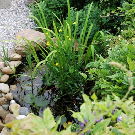 natuurlijke-tuin-met-gebruikte-materialen-Rotterdam-03-CP