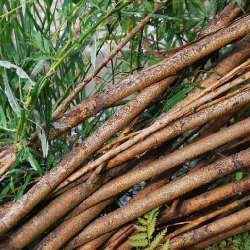 natuurlijke-tuin-met-gebruikte-materialen-Rotterdam-09-CP